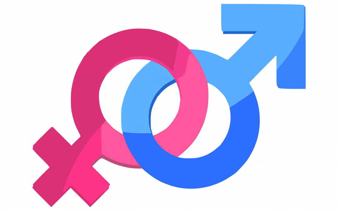 Diferenças entre sexos: novas fronteiras da medicina