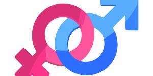 gender 312411 1280